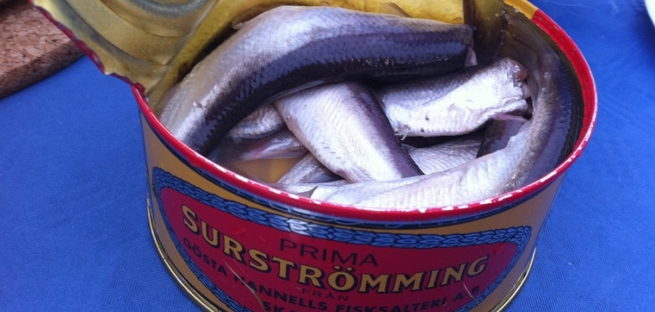 Surströmming: Sweden's very, very stinky fish dish