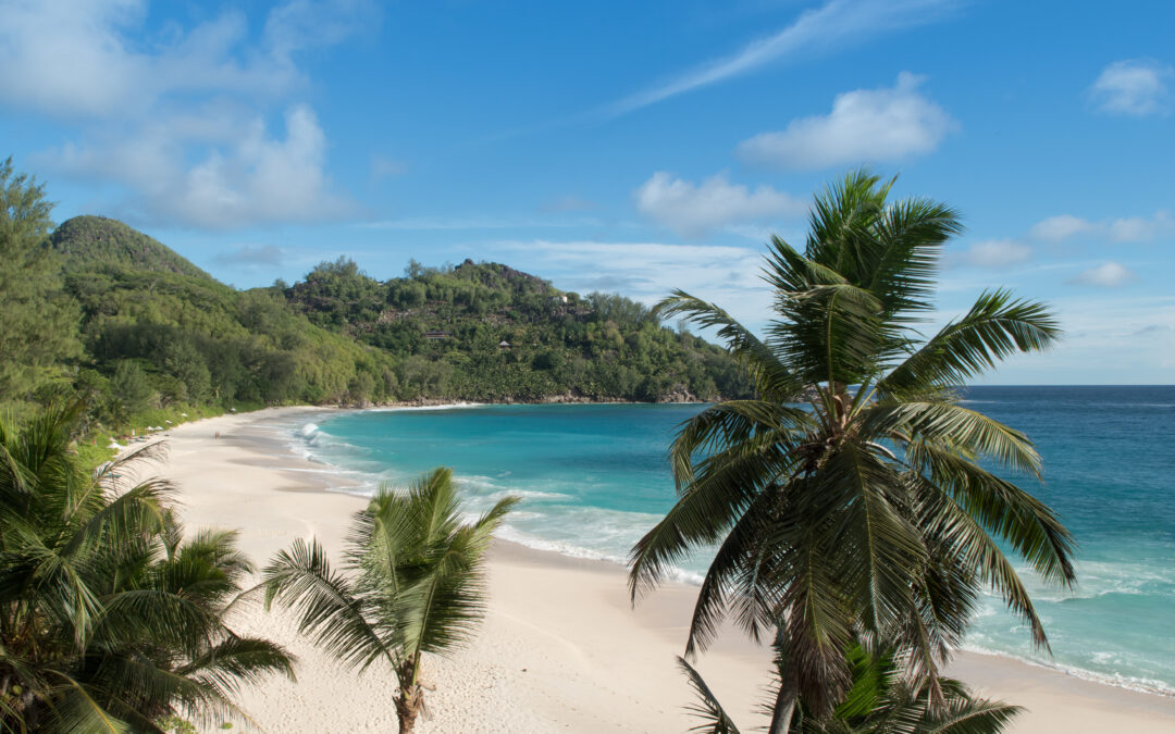 The buried treasure of the Seychelles